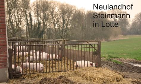 neuland1